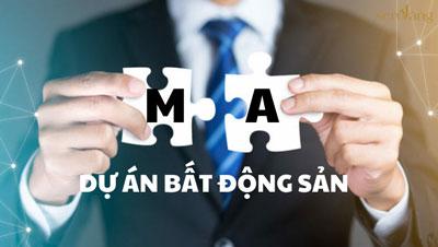 Kinh nghiệm M&A dự án bất động sản – Bất động sản Sen Vàng