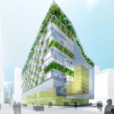 tư vấn concept xanh